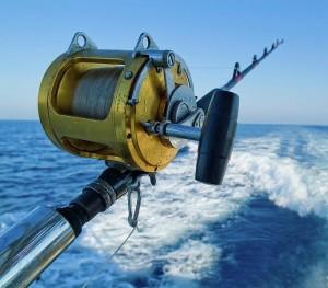 Pics for tuna fishing rod for Tuna fishing reels